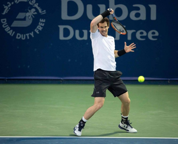 Теннис. АТР-500 Дубаи: превью и прогноз на финал Маррей - Вердаско