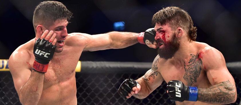 Луке - Прайс: коэффициенты на поединок на UFC 249