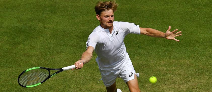 Давид Гоффен – Фернандо Вердаско: прогноз на теннис от Voland96