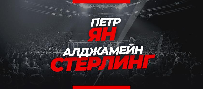 Ян – Стерлинг: ставки и коэффициенты на бой UFC