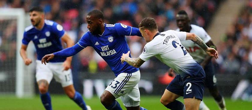 Cardiff City - Tottenham Hotspur: Ponturi Pariuri Premier League