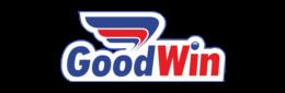Логотип букмекерской конторы Goodwinbet - legalbet.ru