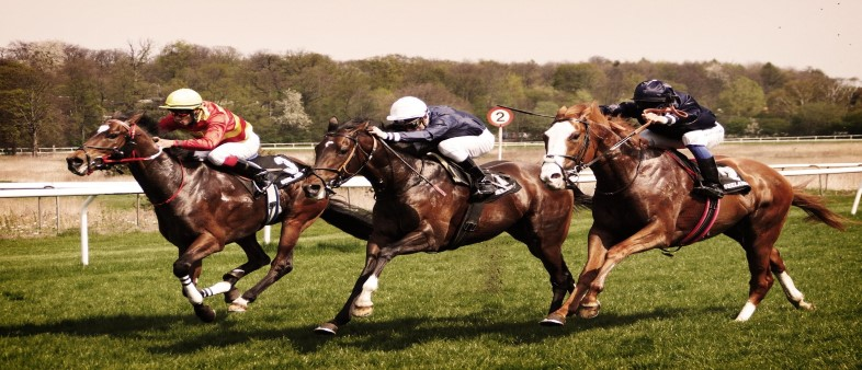 Horse Betting Terms