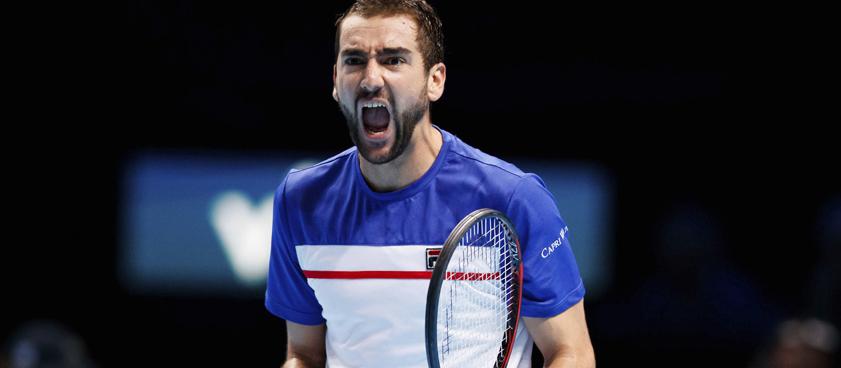 Стив Джонсон – Марин Чилич: прогноз на теннис от Алексея Кашина