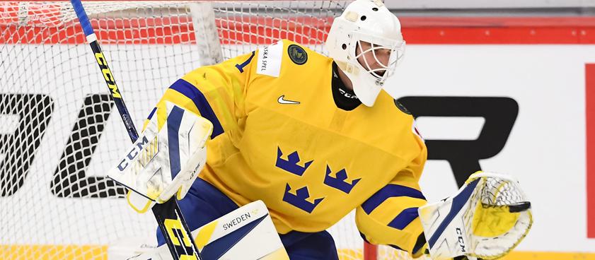 Швеция (до 20) – Чехия (до 20): прогноз на хоккей от Владимира Вуйтека
