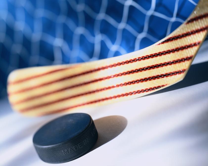 Стратегия Аутсайдер НХЛ: рекордная прибыль