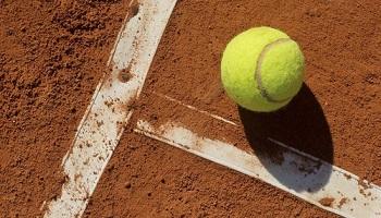 Теннис на грунте: особенности покрытия, игры, ставок.
