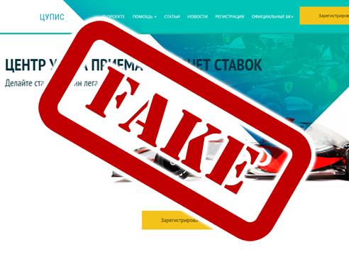 Внимание! В Сети набирают популярность фальшивые сайты ЦУПИС