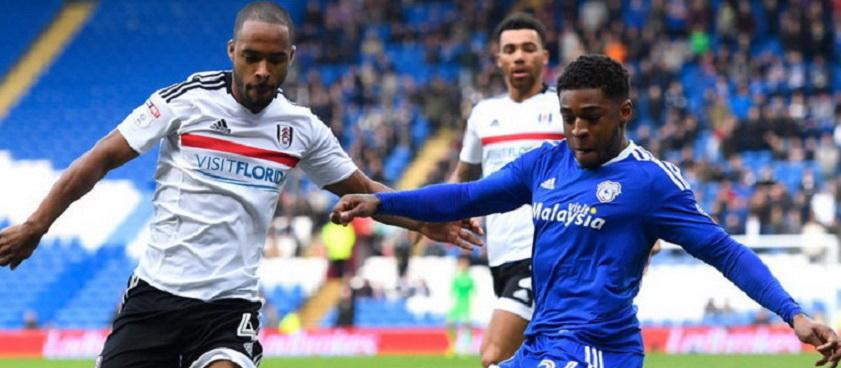 Cardiff - Fulham: Ponturi pariuri Premier League