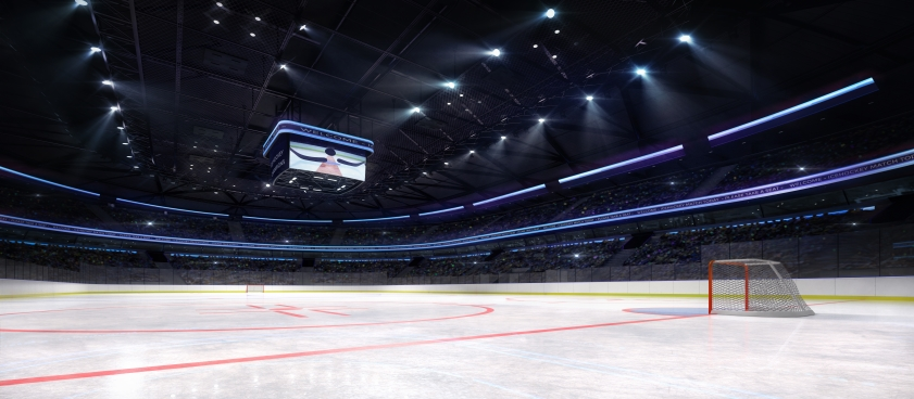 2020 NHL Playoff Picture, Predictions and Odds