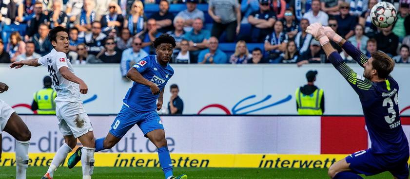 Frankfurt - Hoffenheim. Pronosticuri Bundesliga