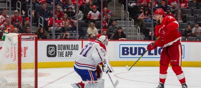 Прогноз на матч НХЛ «Айлендерс» - «Ред Вингз»: чей кризис больше?