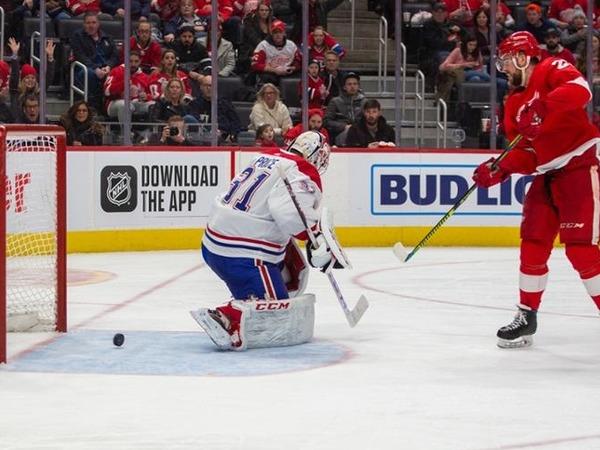 Константин Федоров: Прогноз на матч НХЛ «Айлендерс» - «Ред Вингз»: чей кризис больше?.