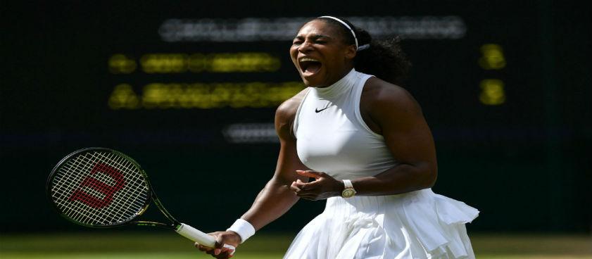 Angelique Kerber - Serena Williams. Pontul lui Paul
